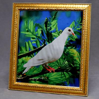 Dove Frame (Photo) by Mr. Magic - Trick