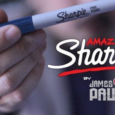 Amazing Sharpie Pen (Blue) by James Paul - Trick