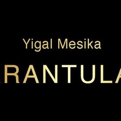 Tarantula II (Online Instructions and Gimmick) by Yigal Mesika - Trick
