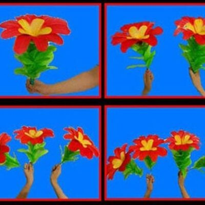 Changing Flowers (1/4) by Black Magic - Trick