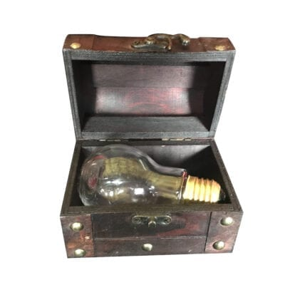Treasure Chest Light Bulb