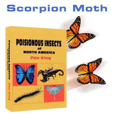 Scorpion Moth by Mac King and Peter Studebaker - Trick