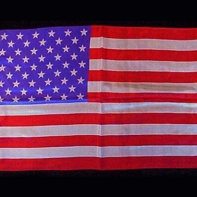 "Rice Silk 12"" x 18"" (American Flag) by Silk King Studios - Trick"