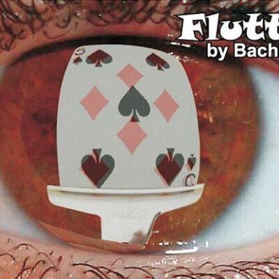 Flutter by Bachi Ortiz video DOWNLOAD