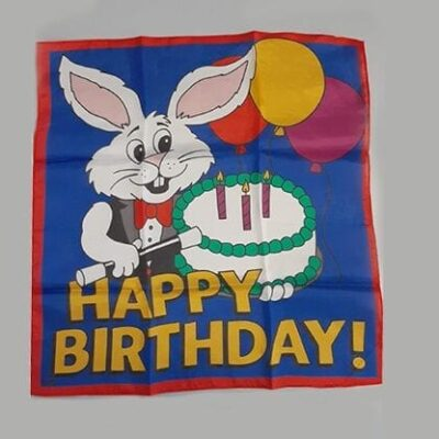 Happy Birthday Silk (18 in) by Ginn and Goshman